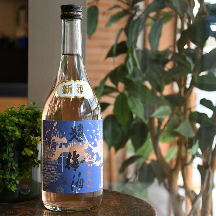 【梅酒】南部美人 糖類無添加 梅酒ヌーボー<720ml>