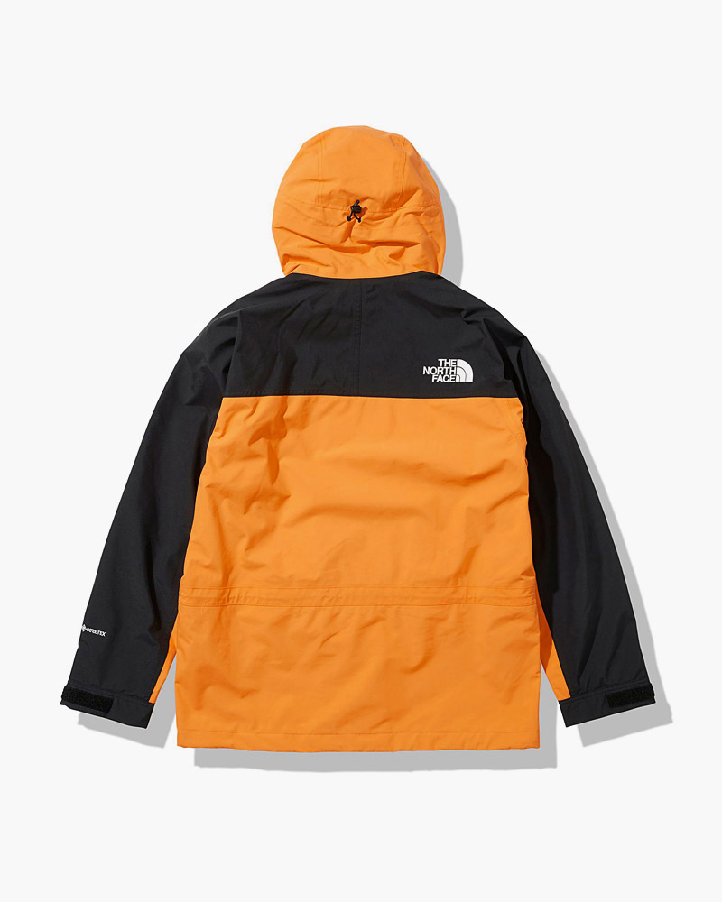 ノースフェイス THE NORTH FACE マウンテンライトジャケット メンズ Mountain Light Jacket NP11834 2021春夏