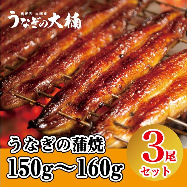 蒲焼150g~160g(3尾セット)