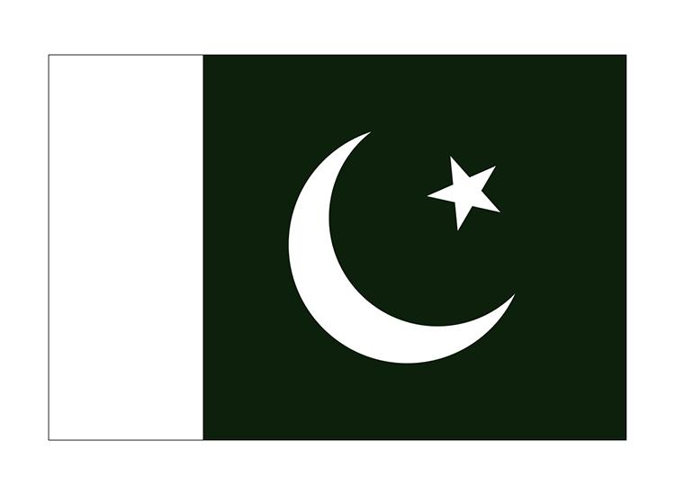 パキスタン 地球にやさしい国旗・外国旗