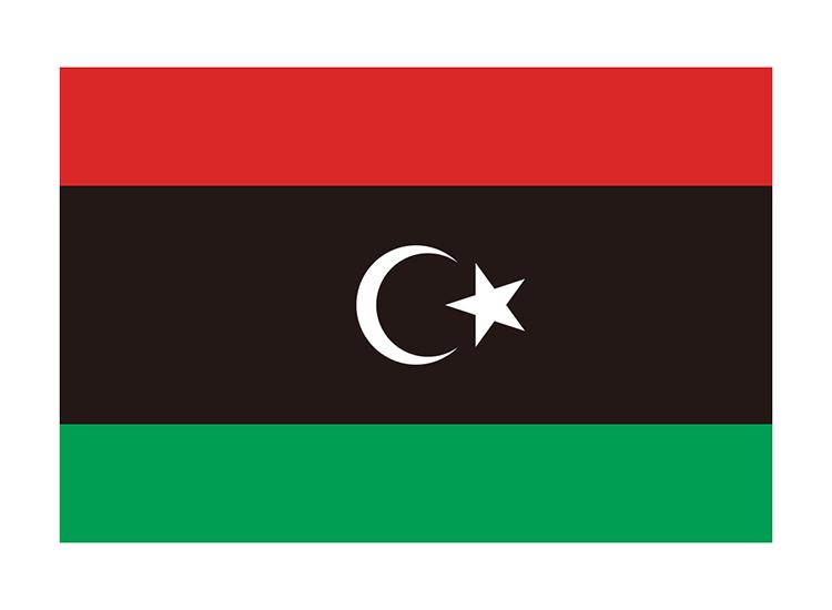 リビア 地球にやさしい国旗・外国旗