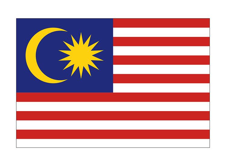 マレーシア 地球にやさしい国旗・外国旗