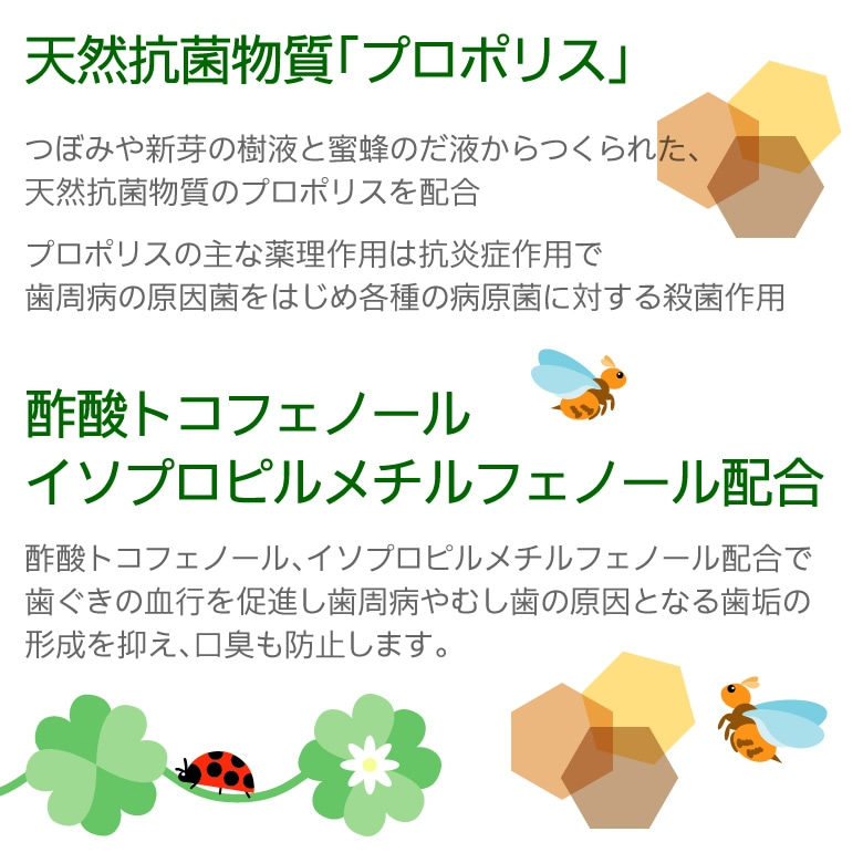 日本自然療法 デンタルポリスDX 80g【医薬部外品】【メール便不可】