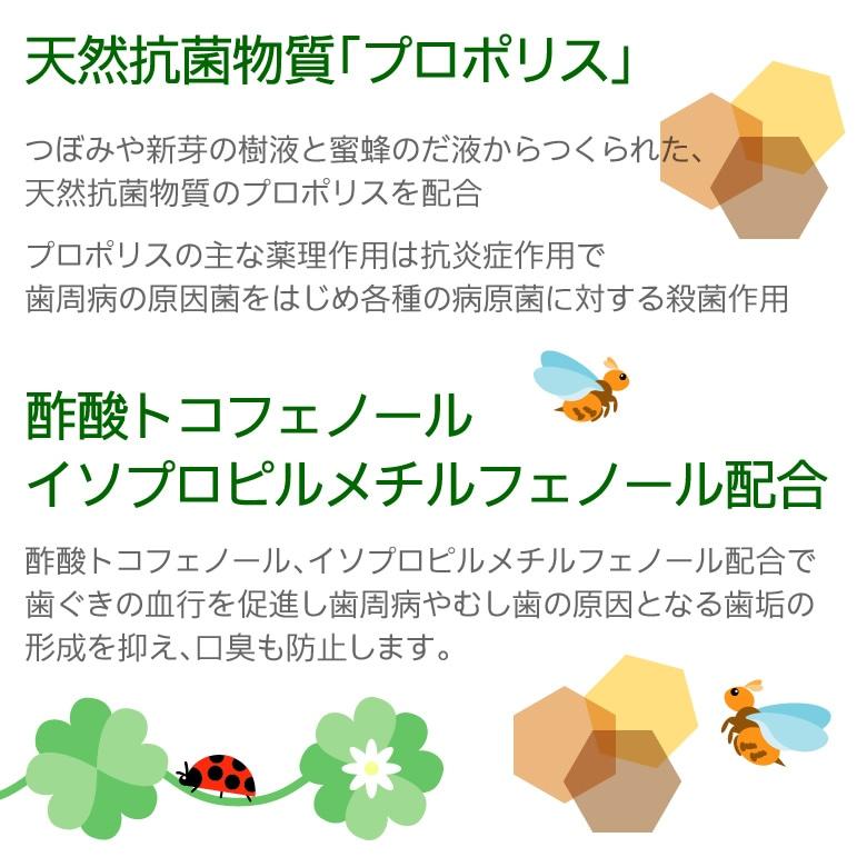 日本自然療法 デンタルポリスDX 80g×3本【医薬部外品】【メール便不可】