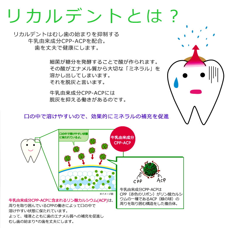 1個 リカルデント ボトルガム 歯科医院専用 キシリトール配合 140g 粒ガム【メール便不可】