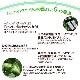 サチャインチオイル インカインチオイル 180g 2本セット インカグリーンナッツオイル エクストラバージン オイル オメガ3脂肪酸