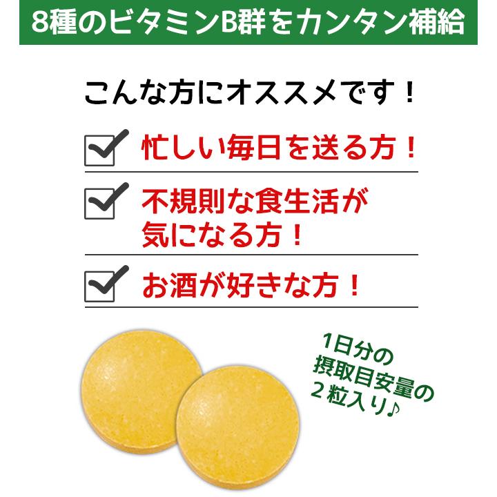 【即納】【特価】 ジャグラー ゴーゴー!サプリ(ビタミンB群) 240個セット(#3458)