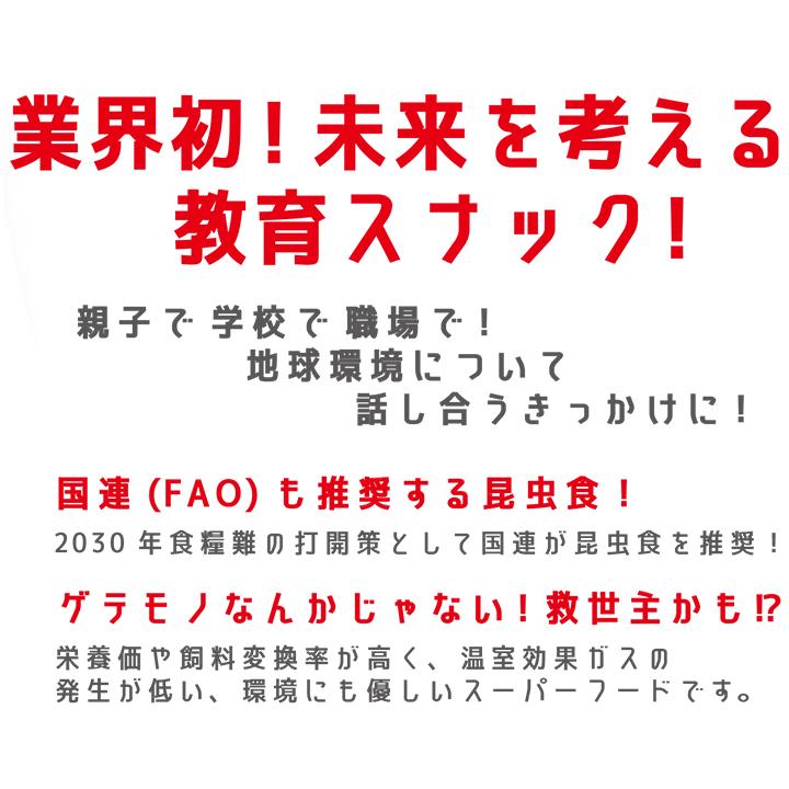 未来コオロギスナック 25g入 60個セット(3c/s)