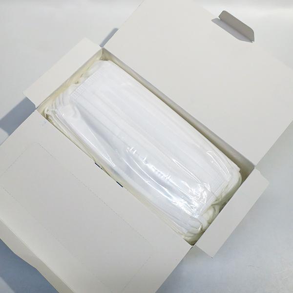 Wワイヤー 不織布マスク ふつう 60枚入 20箱セット (1,200枚、1c/s)