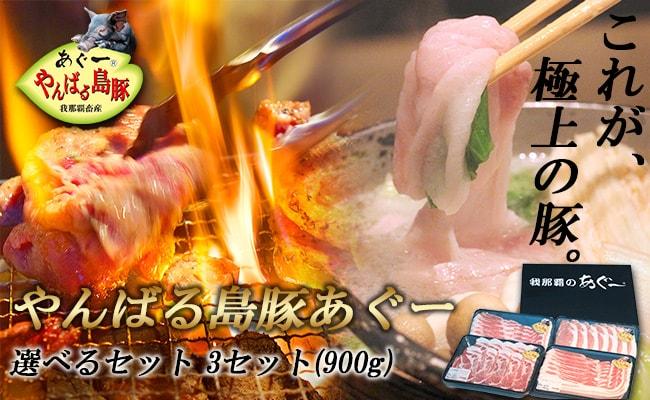 【ギフト】やんばる島豚あぐー 選べる3セット(900g) 送料無料♪