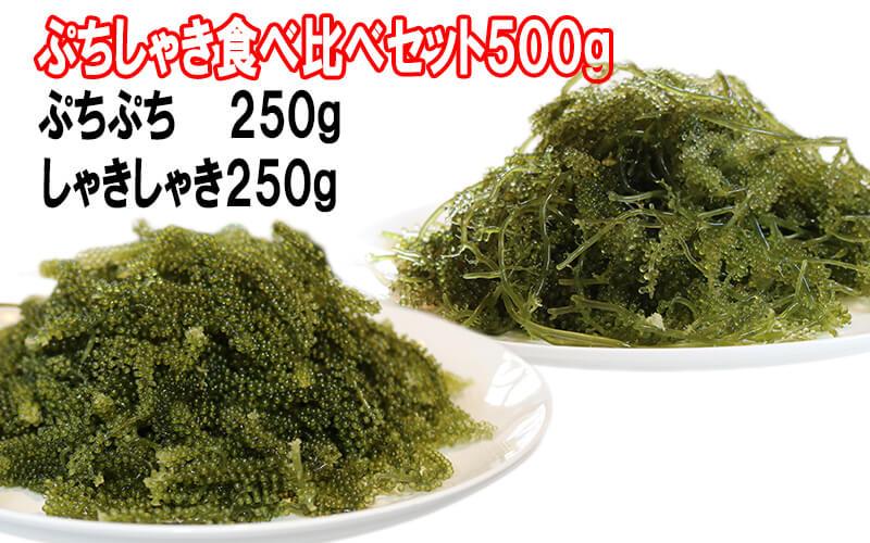 生海ぶどう ぷちしゃき食べ比べセット300g〜 お得な送料無料!
