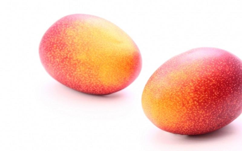 【家庭用】糸満産完熟アップルマンゴー2kg(4〜8個)  (7月上旬より出荷予定)