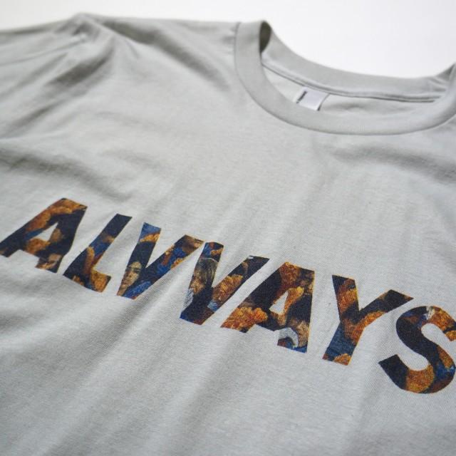 Alvvays Tシャツ オールウェイズ 公式 -Silver