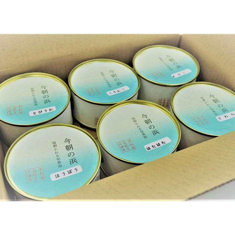 シーライフ 今朝の浜 毎朝変わる旬魚6缶セット