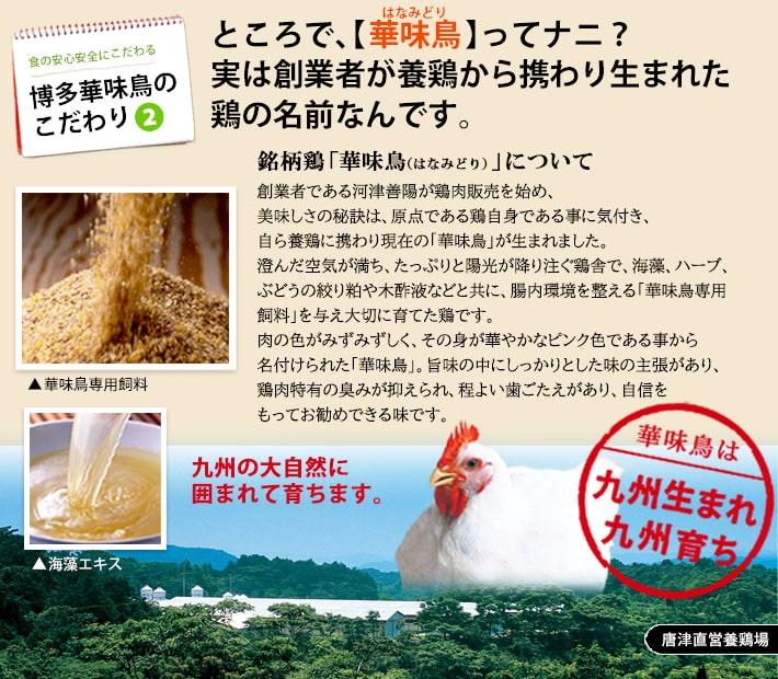 トリゼンフーズ 博多華味鳥 華からっとセット 冷凍便 [HKT-3]