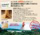 トリゼンフーズ 博多華味鳥 鶏めし彩セット 冷凍便 [TM-01]