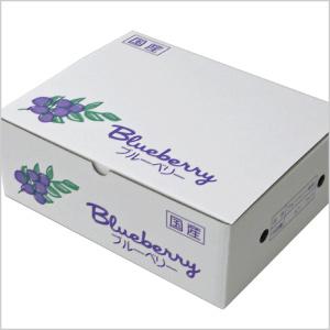 『500g果実用パック専用』 4パック化粧箱20枚入り