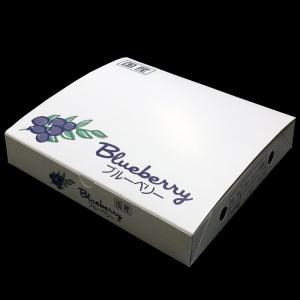 『125gブルーベリーパック専用』 4パック用化粧箱25枚入り
