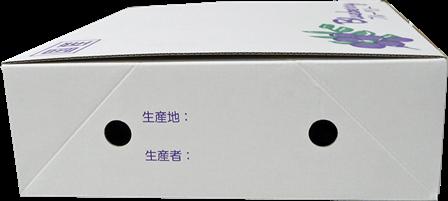 『100gダイヤカット型パック』 4パック化粧箱50組/箱