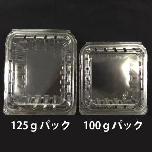 【入数変更】125g用ブルーベリー専用パック 800枚入/箱|大粒果実でも無理なく包装・輸送