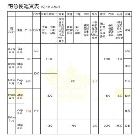 【新米】 令和2年度産 新潟産こしいぶき 5kg