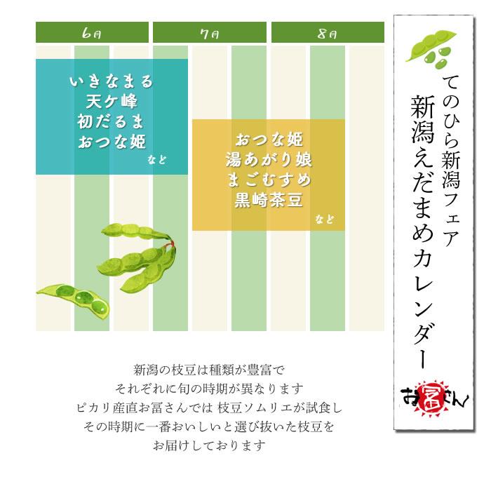 新潟産 旬の枝豆 「1袋 300g お好きな数だけ購入OK」 | 枝豆 えだまめ プチギフト ギフト ご自宅 新潟県 徳用