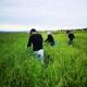 【新米】 令和3年度産 自然栽培『凄米』新潟産コシヒカリ 5Kg   すごまい 無添加・無農薬  おうちごはん 巣ごもり 贈り物