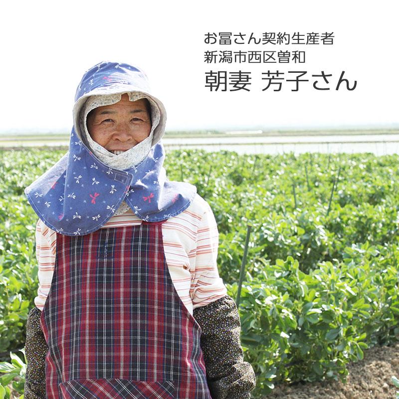 新潟産 そら豆 Lサイズ 2Kg  【2020販売期間終了】