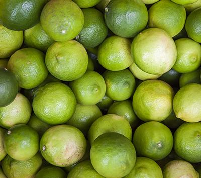 緑の里りょうくんからお届け! 宮崎県産日南レモン2kgセット