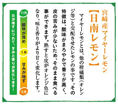 緑の里りょうくんからお届け! 宮崎県産日南レモン3kgセット