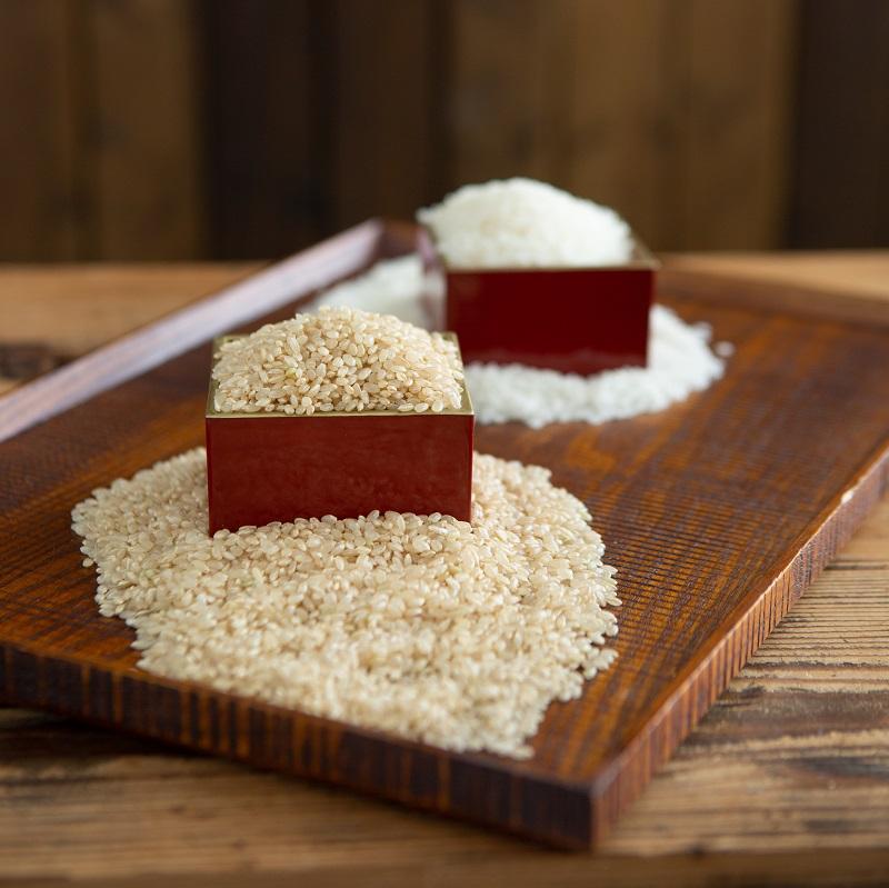 吉田さん家のコシヒカリ<玄米>(1kg)