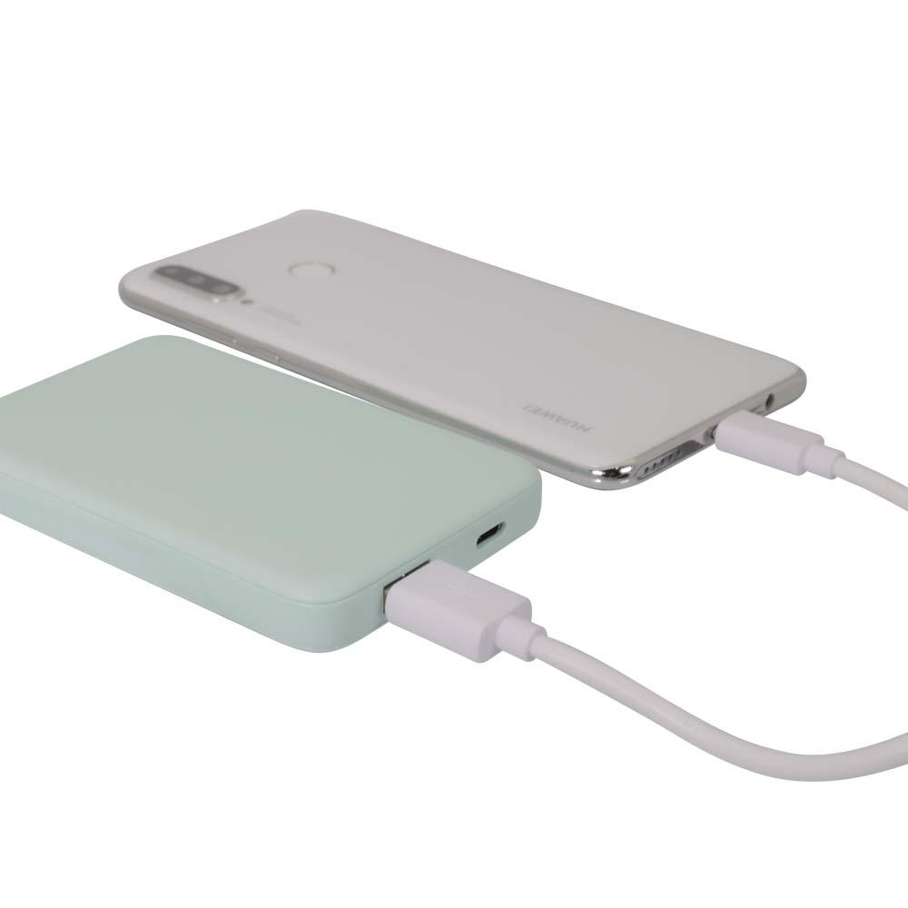小型軽量モバイルバッテリー 5000mAh USB Type-C入出力+ USB Type-A出力 (OWL-LPB5012)宅C
