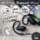 高音質なaptXとAACに対応した ワイヤレスイヤホン Bluetooth4.1 IPX4準拠(OWL-BTEP10)宅C