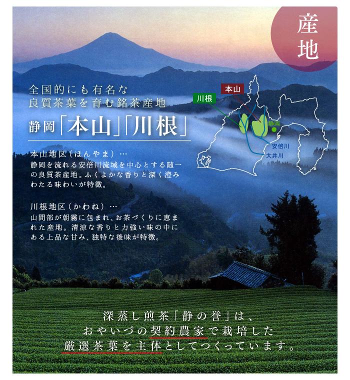 5種静岡茶飲みくらべセット(煎茶・玉露・くき茶・芽茶・粉茶)