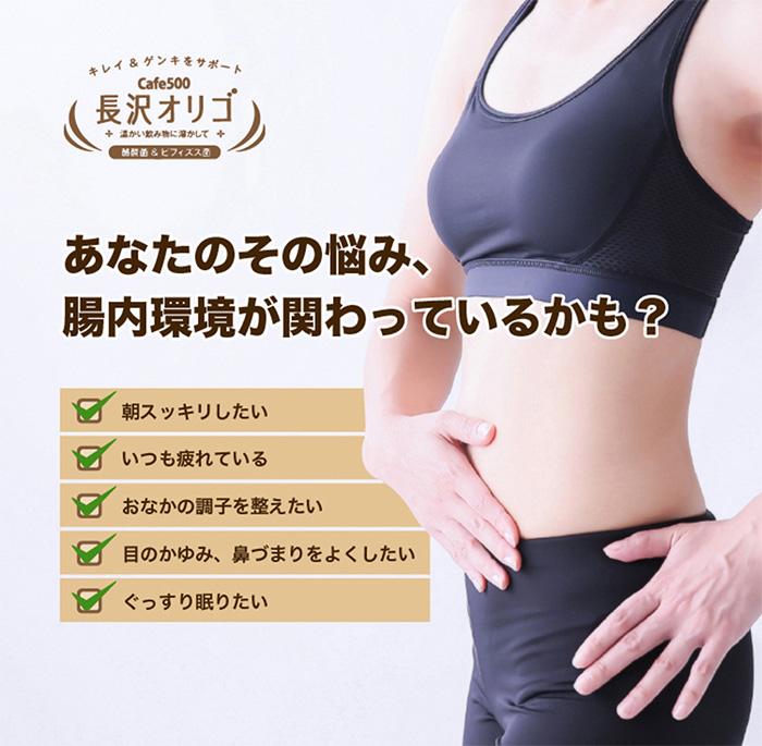 【送料無料】【オリゴ糖】長沢オリゴ12本まとめ買い