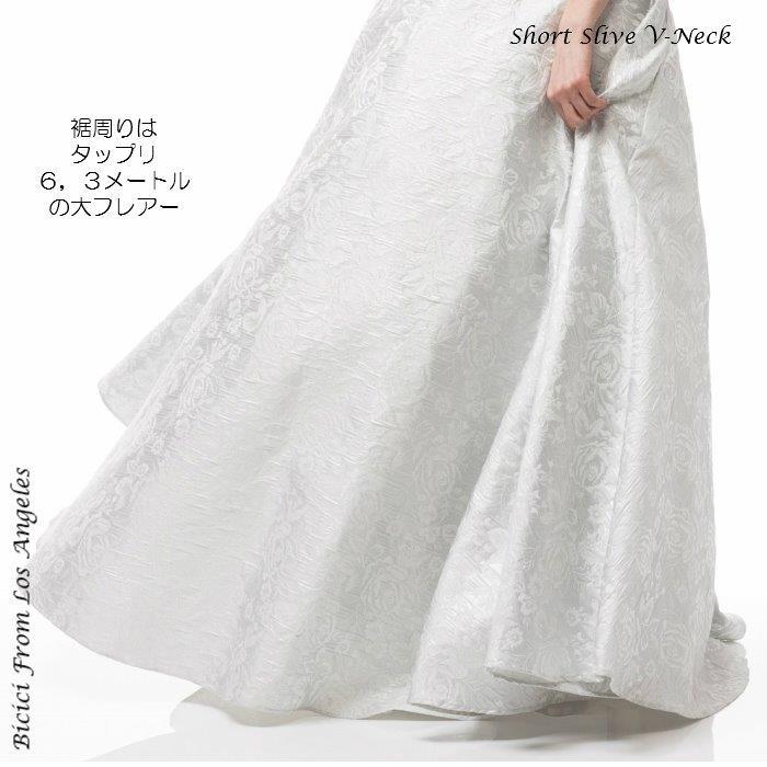 ドレス インポートドレス 刺繍 Aライン 袖付 声楽 シルバー ピアノ 演奏会ドレス 発表会ドレス マザーズドレス ミセス シャンソン イブニングドレス ステージドレス パーティドレス 楽器演奏