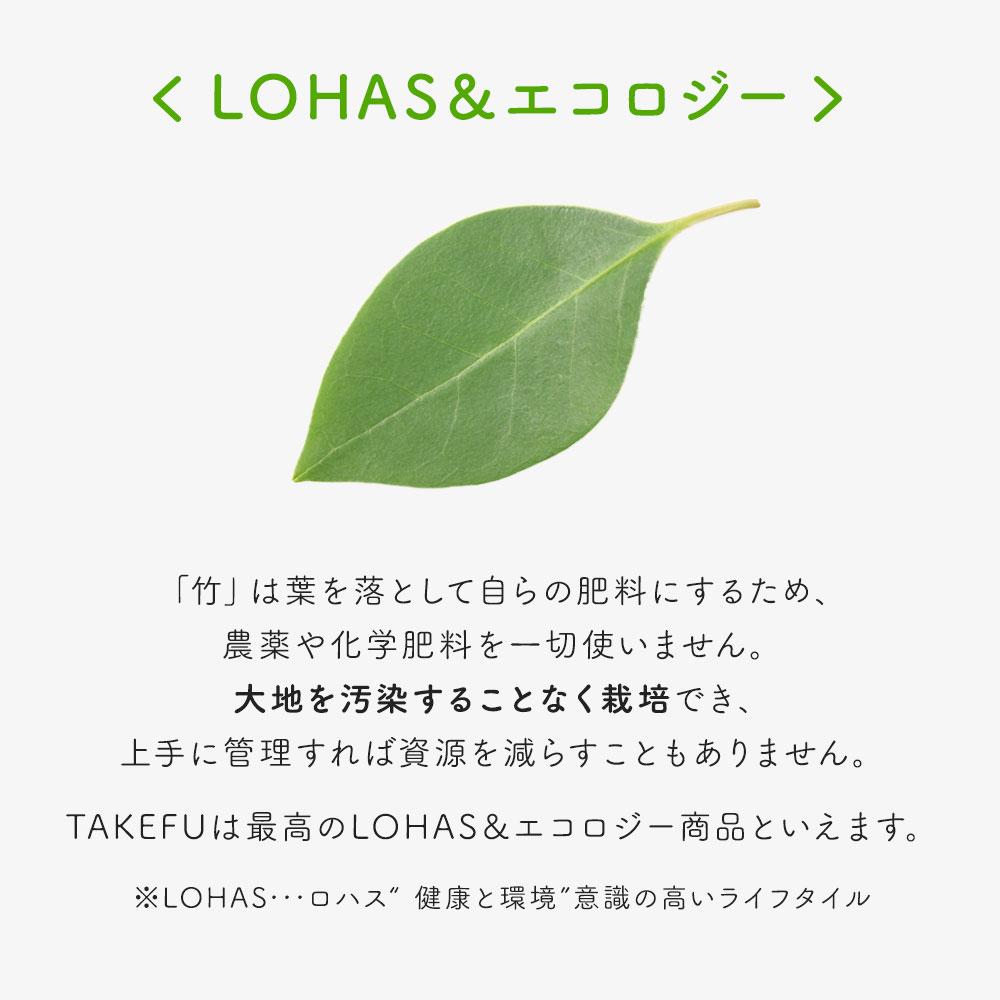 TAKEFU(竹布) タオルハンカチ/エコ・グリーン5枚セット [ネコポス送料無料]