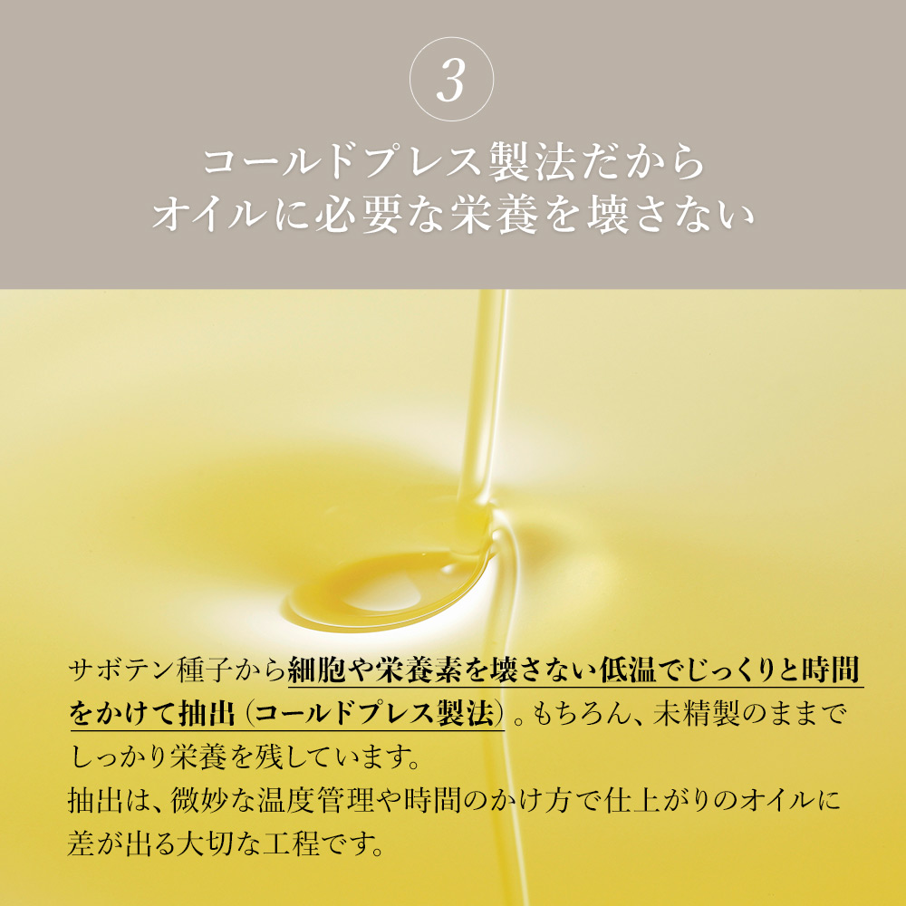 【定期宅配】ウチワサボテンオイル CACTI ブレンドオイル