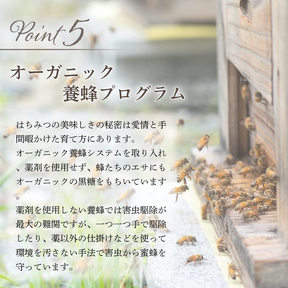 UU 天然はちみつ(モチノキ)