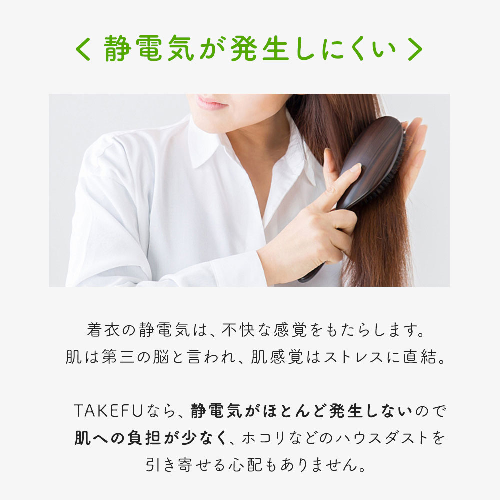 [ネコポス送料無料] TAKEFU(竹布) 布ナプキン Lサイズ4枚セット