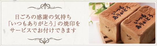 モンタボープレミアムセレクト吟屋久島-極-セット【1セット】