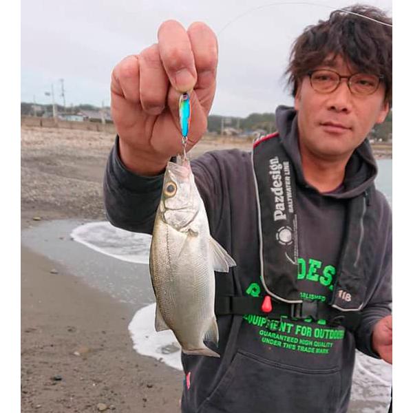 海晴弾丸 Kaisey DANGAN 【light model】7g(かいせいだんがんライトモデル7g)