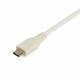 StarTech USB Type-C 有線LANアダプタ ホワイト USB-Aポート付属 USB-C-ギガビットEthernet変換NIC|US1GC301AUW