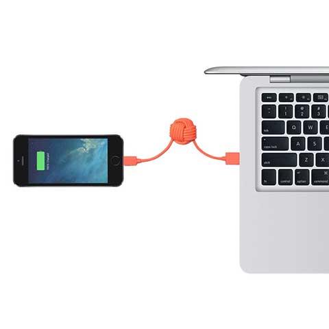 Native Union  KEY CABLE  Lightning-USBケーブル MFi CORAL KEY-L-COR-V2