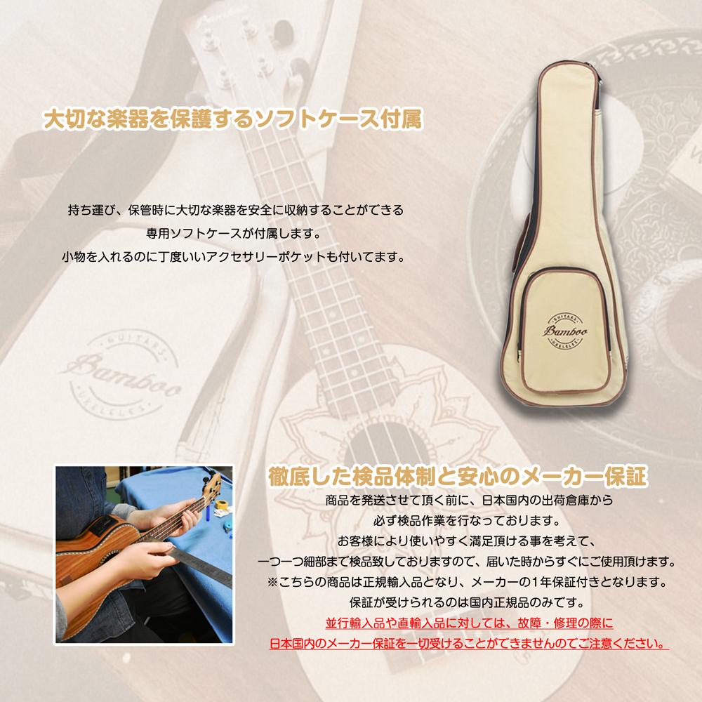 Bamboo Concert w/EQ