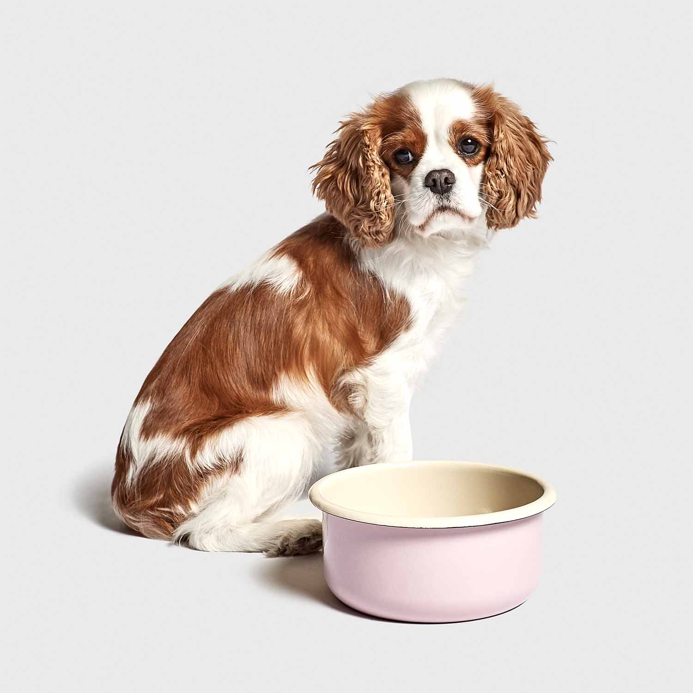 DOG BOWL GRANNY - PINK