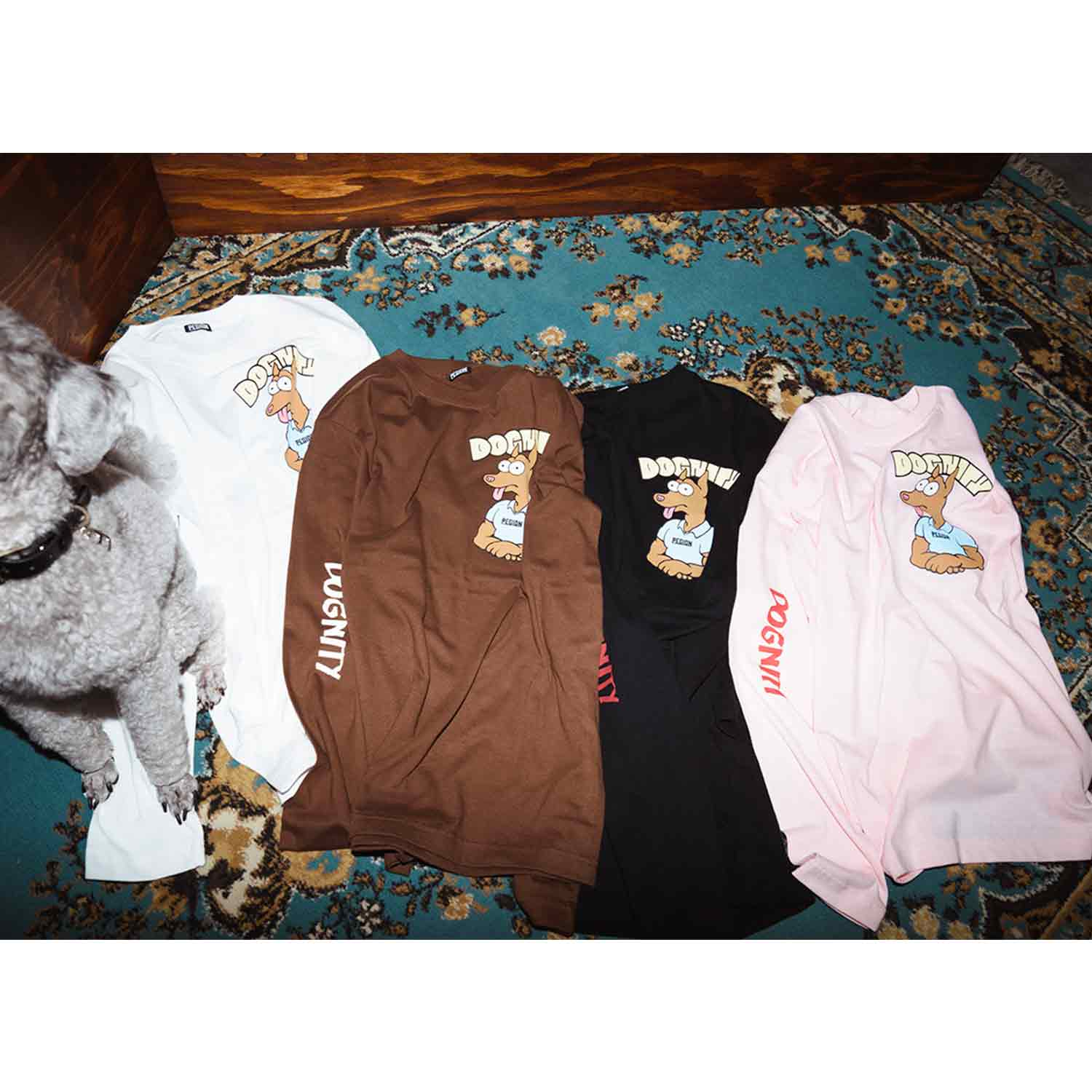 DOGNITY L/S T-SHIRTS - BROWN