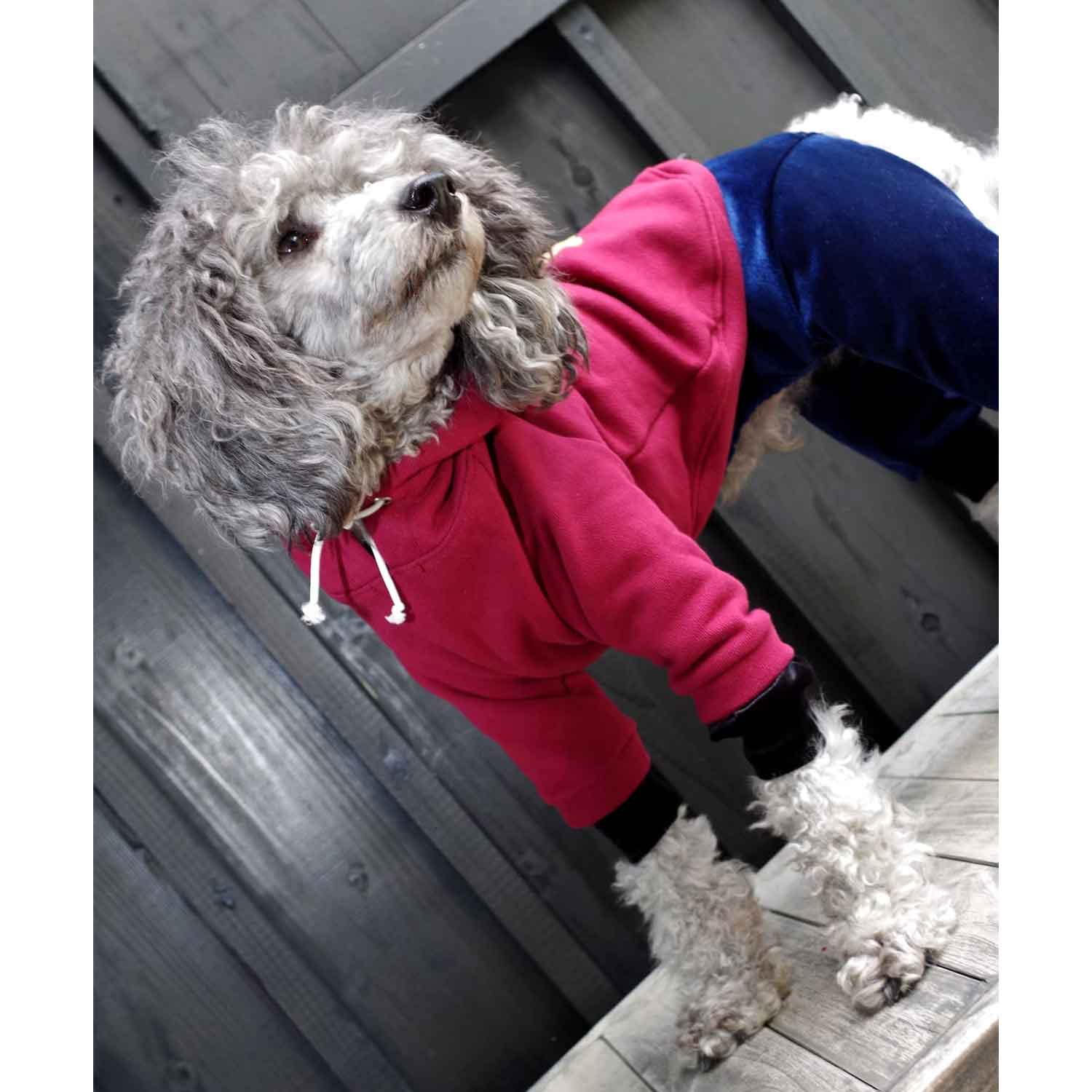 DOGNITY DOG PARKA RED