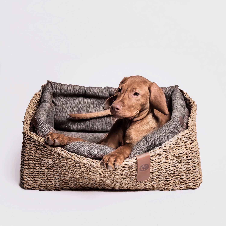 DOG BED HIDEAWAY HERRINGBONE BROWN