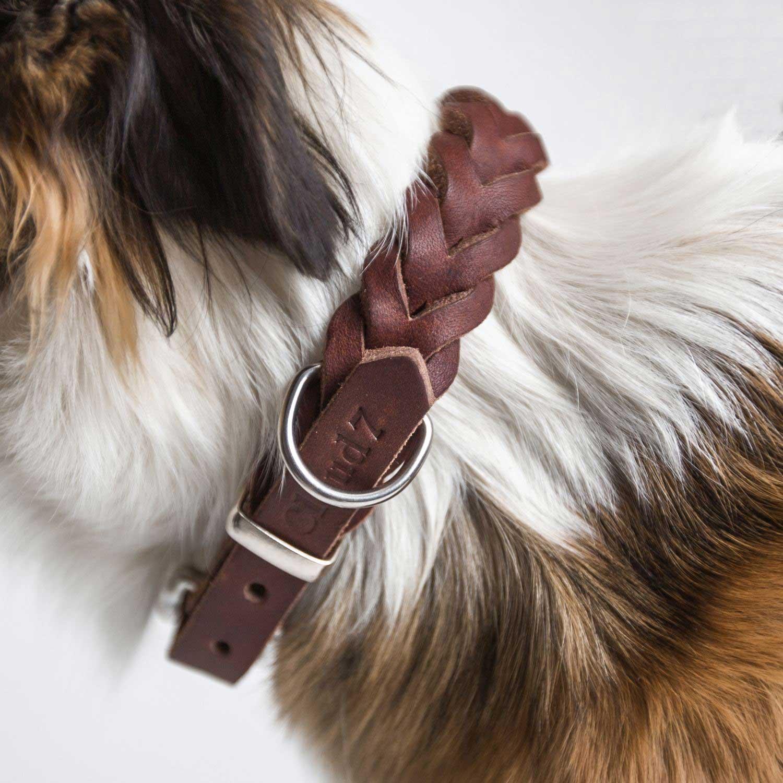 DOG COLLAR CENTRAL PARK SADDLE - BROWN